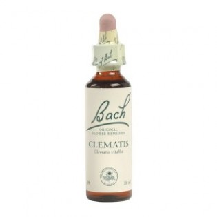 BACH CLEMATIS 20ml