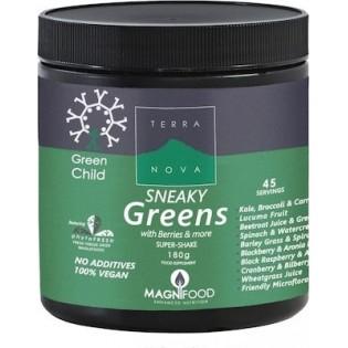 TerraNova Child Sneaky Greens Super Shake 180gr